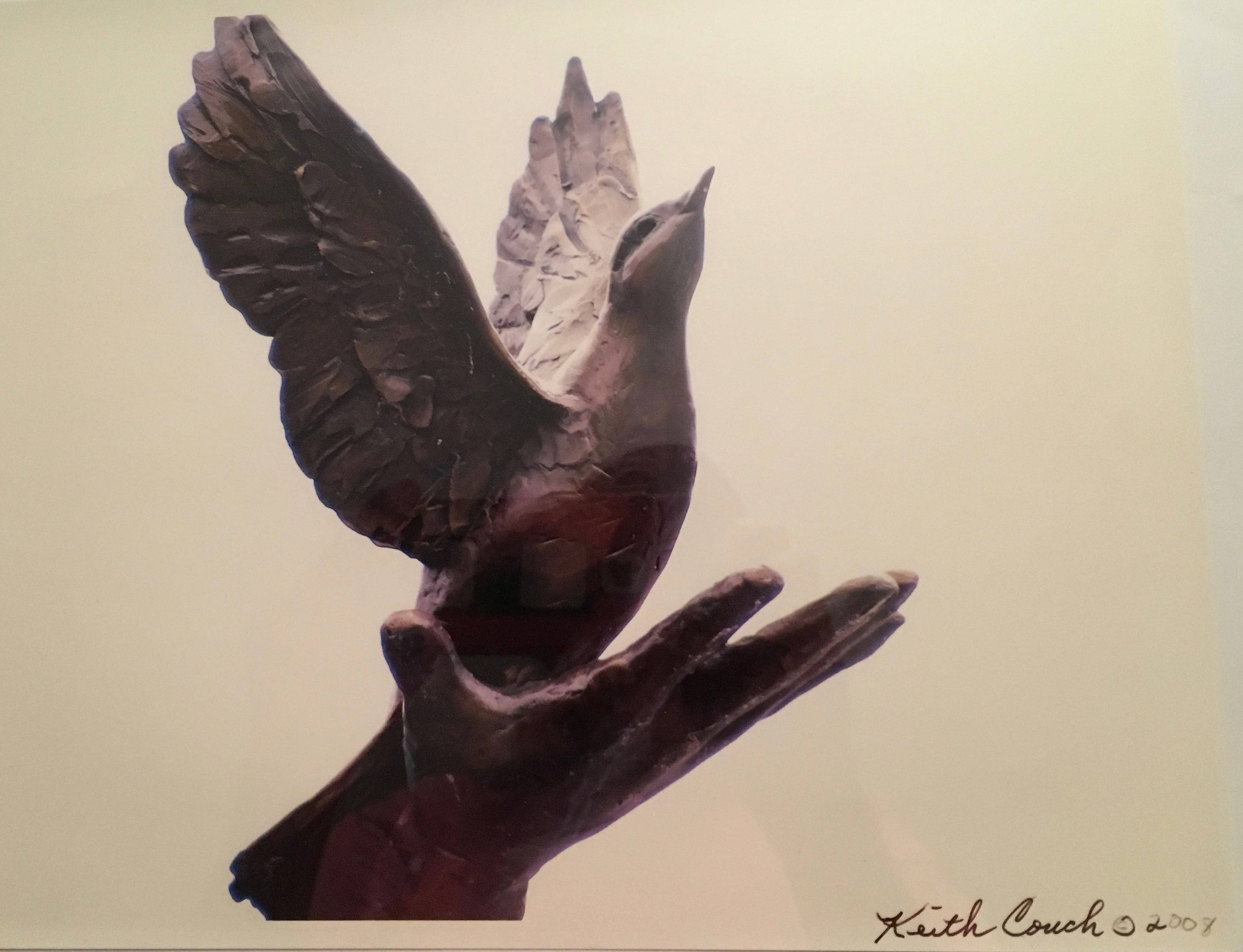 hand freeing dove