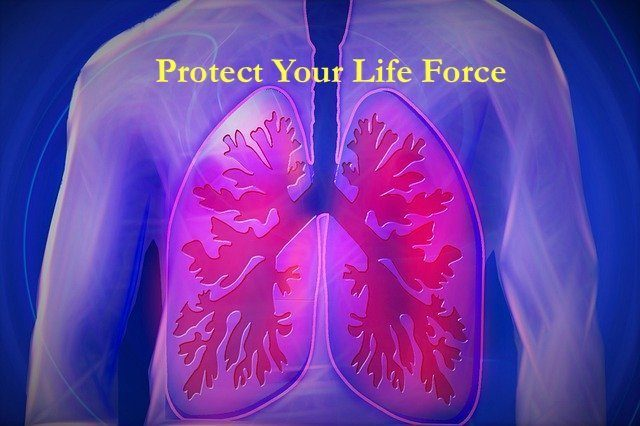 lungs - Protect Your LIfe Force